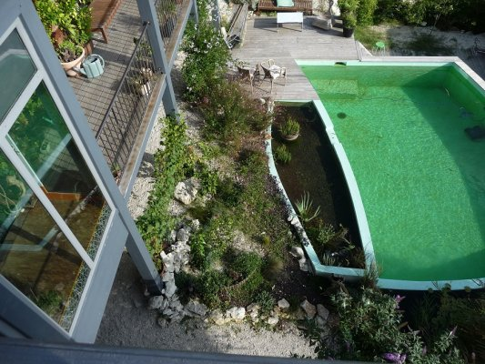 Piscine naturelle 65 for Piscine naturelle prix