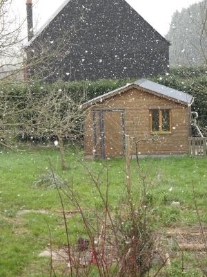onagre lilas devant la maison abri de jardin sous la neige