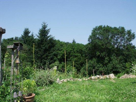 Maison cologique en paille vendre en auvergne puy de d me 63 pr s de vichy parc - Maison jardin a vendre aylmer colombes ...
